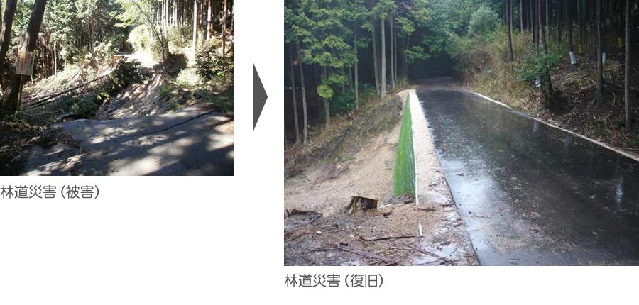 林道災害(被害)→林道災害(復旧)